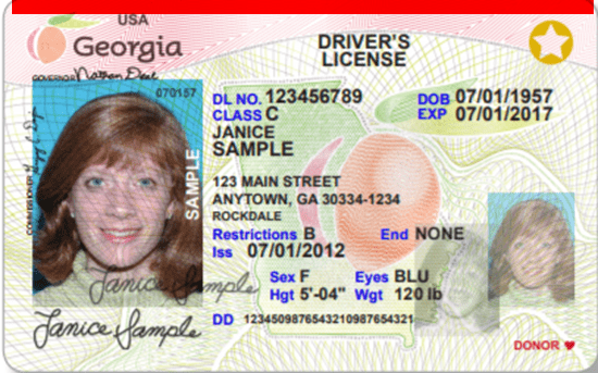Georgia Repeat Offender License