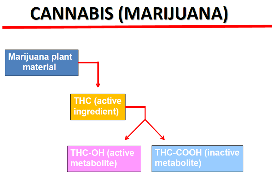 DUI Marijuana Diagram