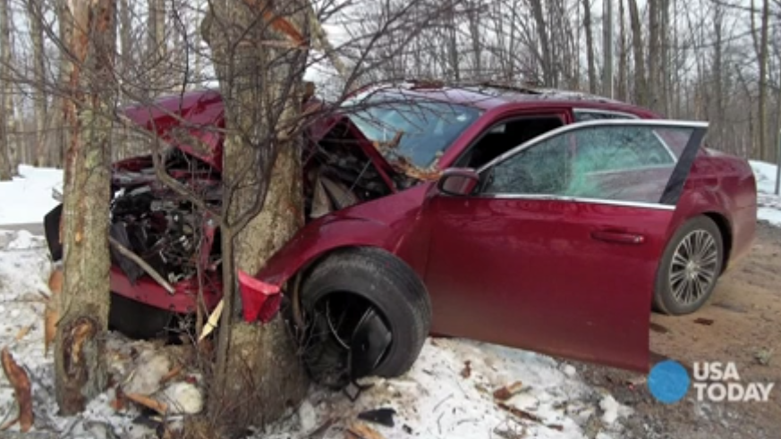 Car Crashed Into Tree